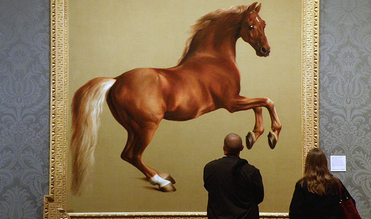 Whistlejacket by George Stubbs - National Gallery in London